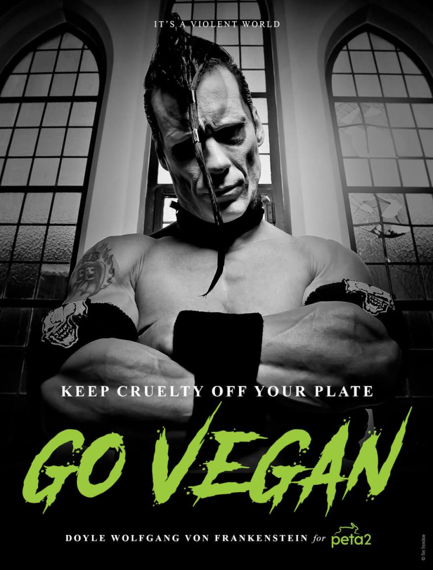 p2_Doyle_Vegan_Ad_300.jpg